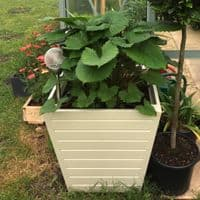Tapered Planter, Accoya Wooden Garden Planters Painted any Colour